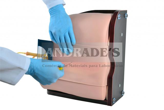 Simulador avançado adulto p/ punção lombar - SD-4046