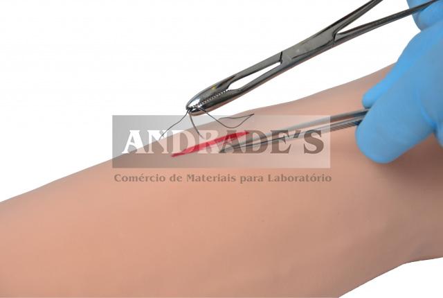 Simulador de braço avançado p/ suturas cirúrgicas - SD-4021