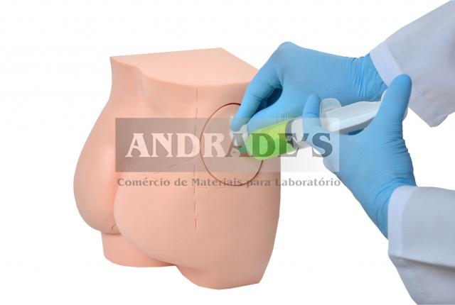 Simulador de injeção intramuscular no glúteo e sondagem retal -SD-4009/C