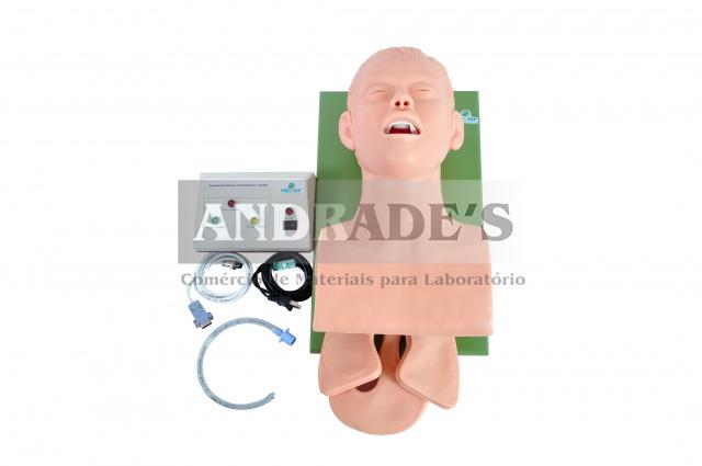 Simulador de intubação adulto eletrônico - SD-4005