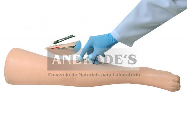 Simulador de perna avançada p/ suturas cirúrgicas - SD-4022