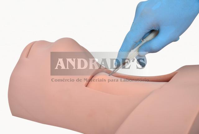 Simulador de traqueostomia - SD-4047