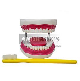 Arcada dentária gigante c/ língua e escova - SD-5059
