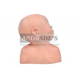Cabeça pediátrica p/ punção venosa - SD-4030