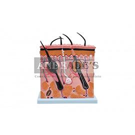 Corte de pele em camada - SD5054