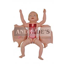 Manequim bissexual bebê c/ órgãos internos p/ treino de enfermagem - SD-4001