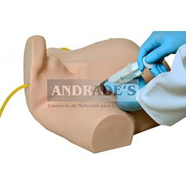 Simulador de acesso venoso central - SD-4043