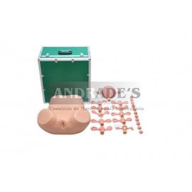 Simulador ginecológico - SD-4012